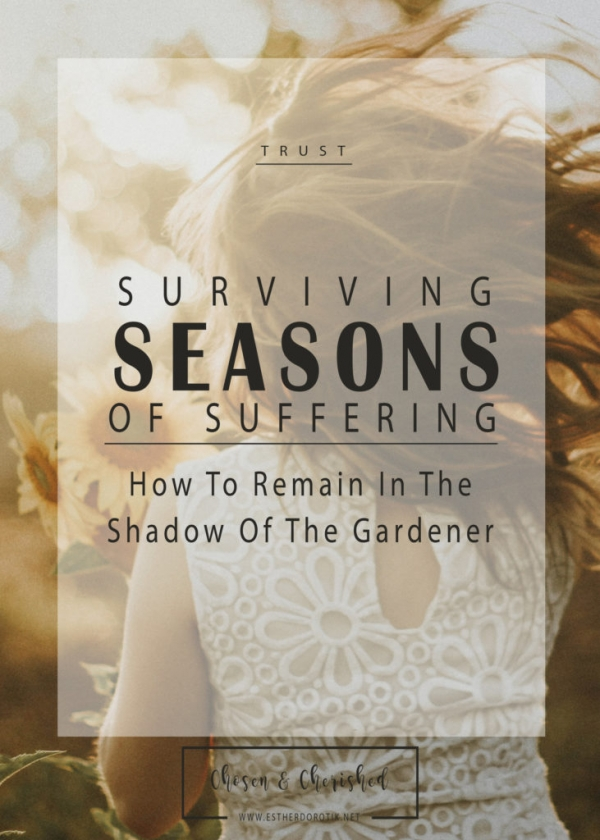 in the shadow of the Good Gardener, Jesus, John 15, pruning of God, storms of life, dry barren seasons, strength when going through hard seasons, remaining connected to the vine, bible study on painful seasons, dealing with loss, becoming deeply rooted