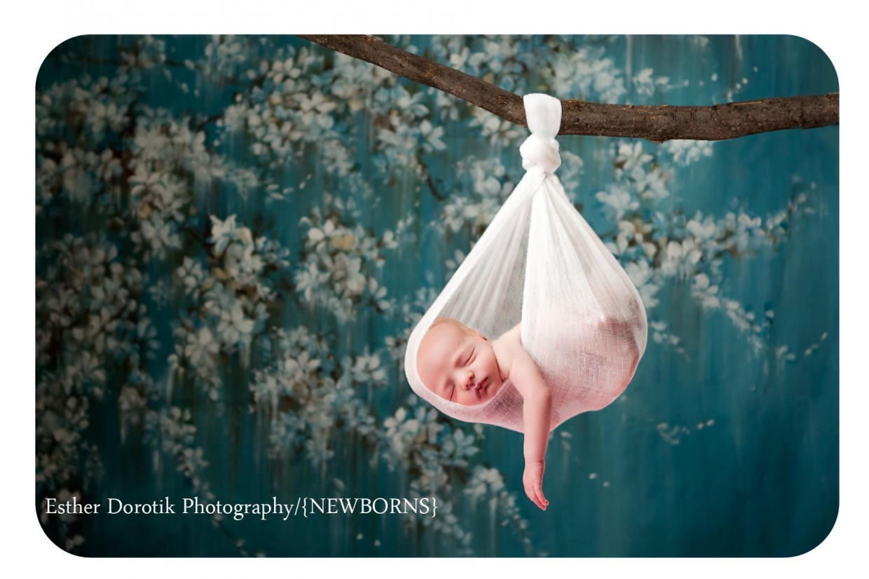 baby hanging in tree