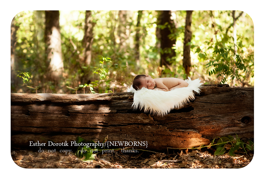 dallas-photograph-of-newborn-baby-baby-boy-outside-in-trail-area