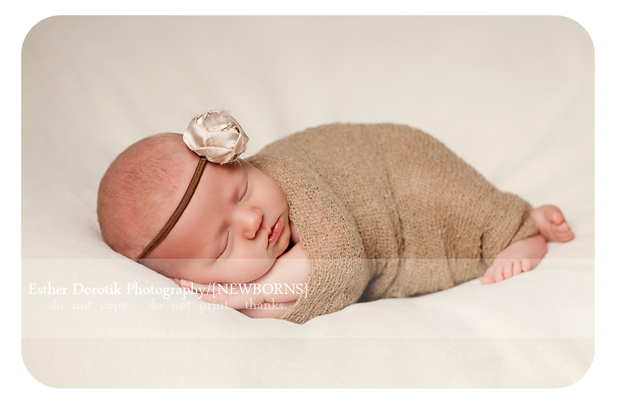 newborn-baby-girl-picture-taken-by-dallas-newborn-photographer