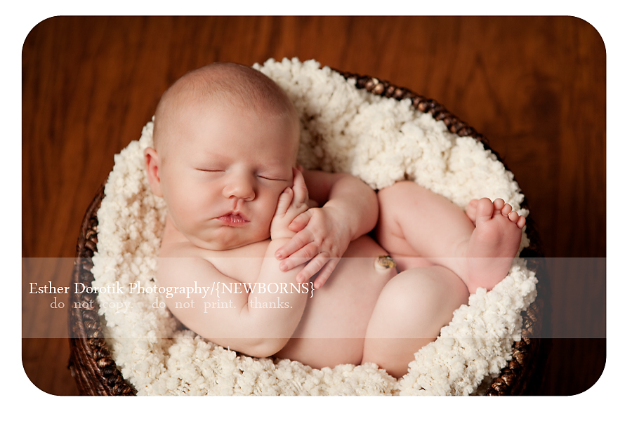 newborn-photography-of-baby-in-bakset-with-cream-blanket