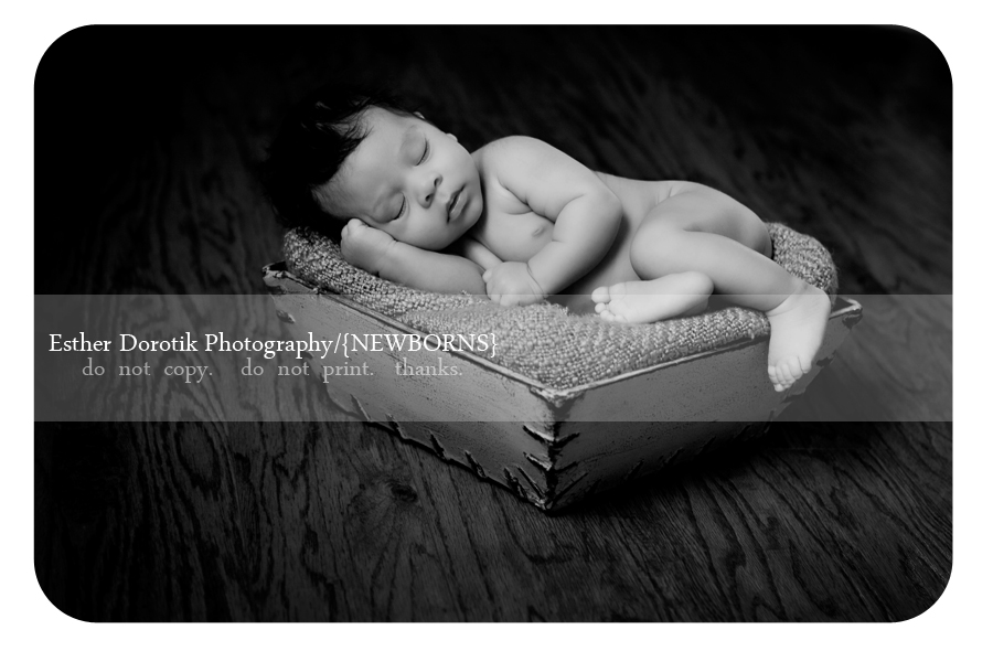 black-and-white-newborn-photograph-of-baby-laying-in-basket