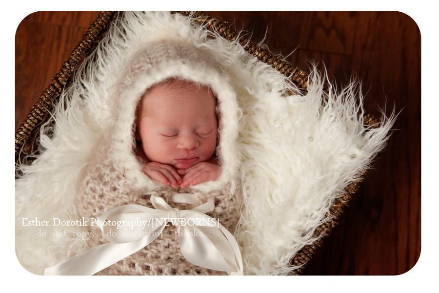 photo-of-6-day-old-newborn-in-basket-with-fur-wrapped-in-cocoon