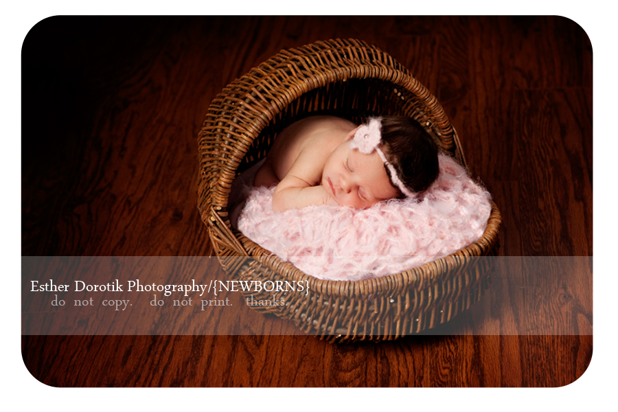 Dallas-newborn-photography-taken-in-basket-with-pink-headband