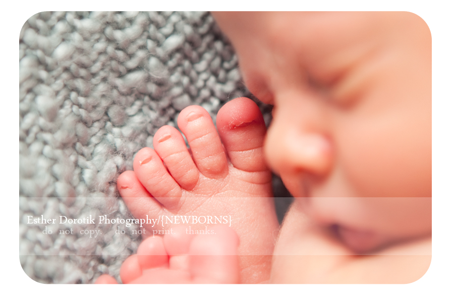 picture-of-newborn-toes-near-face-taken-by-fort-worth-newborn-photographer