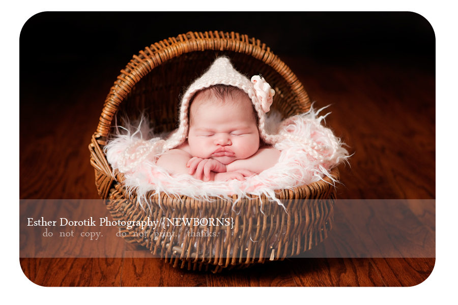 picture-of-newborn-baby-girl-laying-on-pink-fur-in-basket