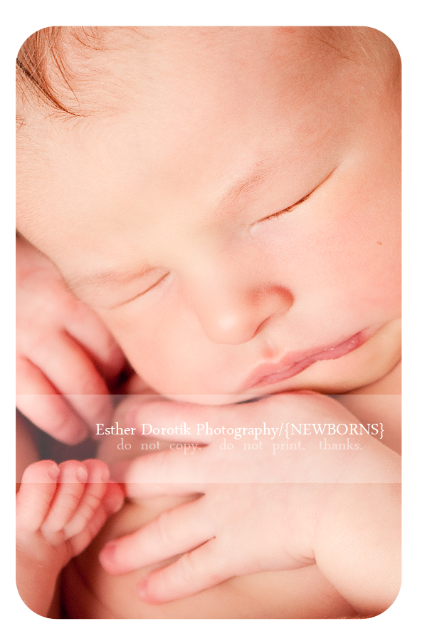 Fort-worth-newborn-photography-of-baby-balled-up-in-fetal-position-in-basket