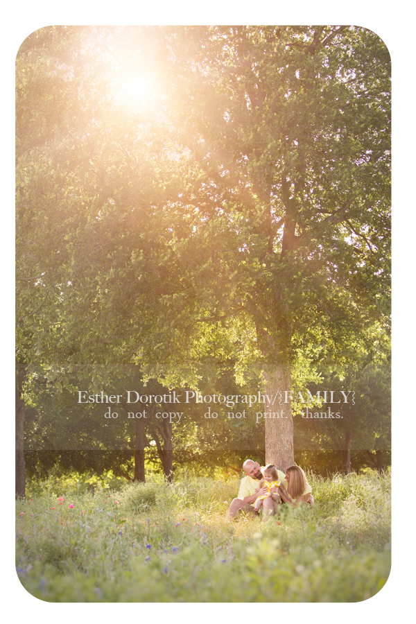 photo-of-family-sitting-under-tree-with-sunflare-taken-at-sunset-by-Frisco-family-photographer