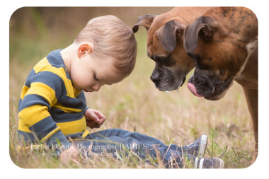 photo-of-two-year-old-boy-with-his-dogs-taken-by-Dallas-family-and-child-photographer