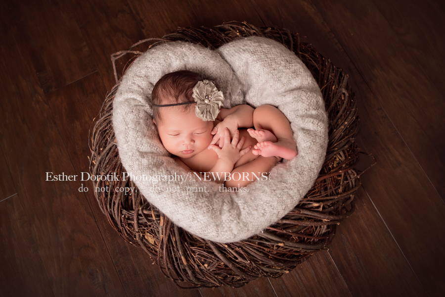picture-of-newborn-baby-girl-laying-in-heart-shape-bird-nest-by-Denton-newborn-photographer
