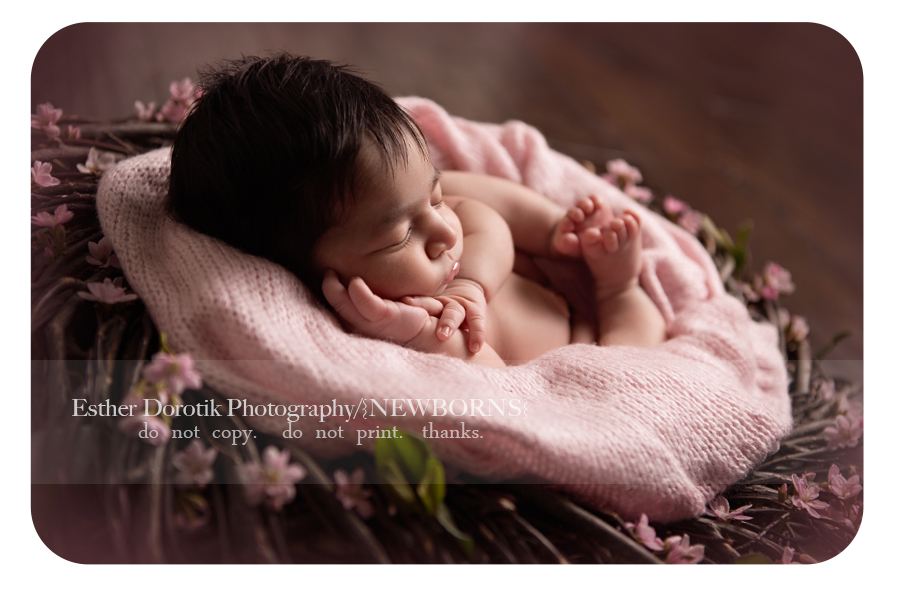 newborn-baby-girl-laying-in-twig-basket-with-flowers-by-Grapevine-newborn-photographer