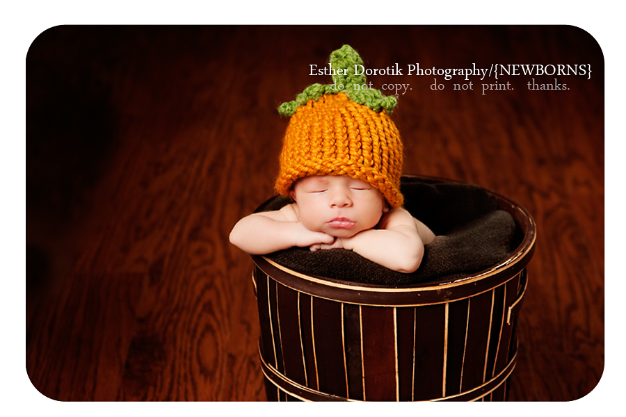 newborn-baby-boy-in-brown-basket-with-pumpkin-hat