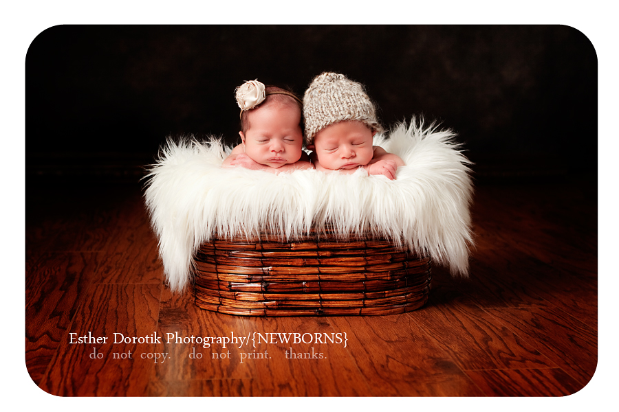 photograph-of-newborn-twin-boy-and-girl-laying-in-basket-with-fur-and-hat