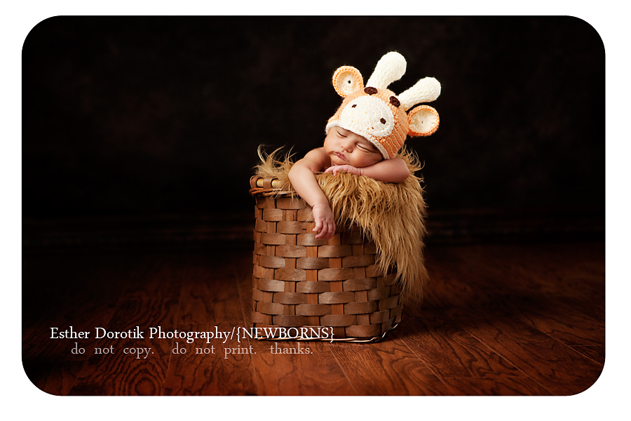 dallas-photograph-of-newborn-boy-in-a-basket-with-fur-and-reindeer-hat