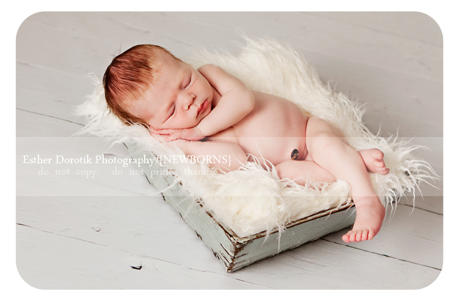 newborn-baby-photograph-laying-in-blue-basket-with-white-fur