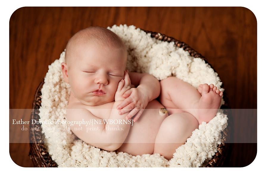 newborn-photography-of-baby-in-bakset-with-cream-blanket