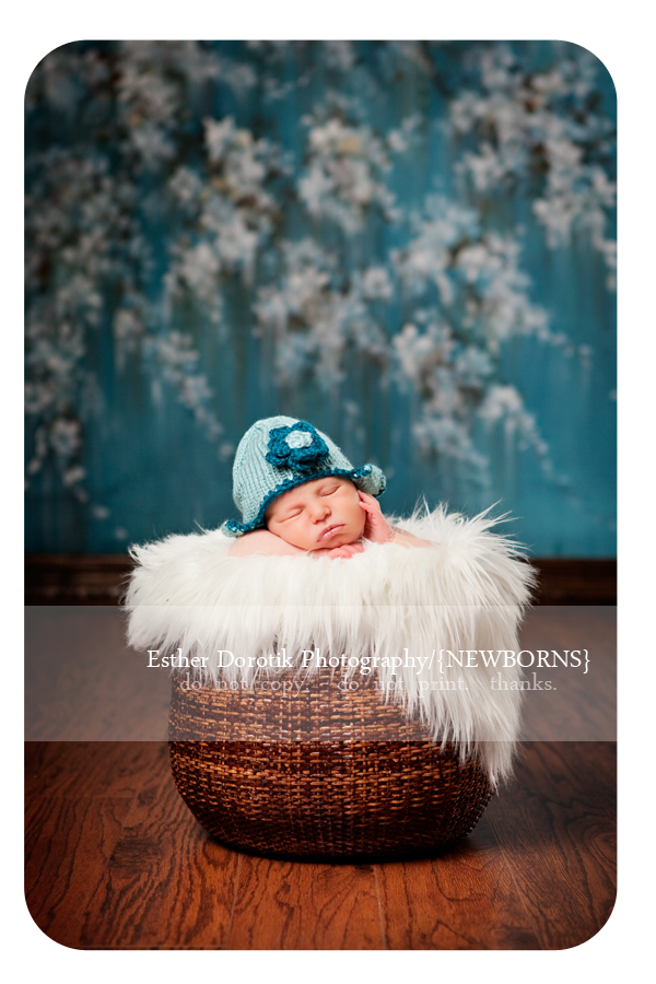 photograph-of-newborn-baby-posed-in-a-basket-in-front-of-Sherry-Blossom-backdrop