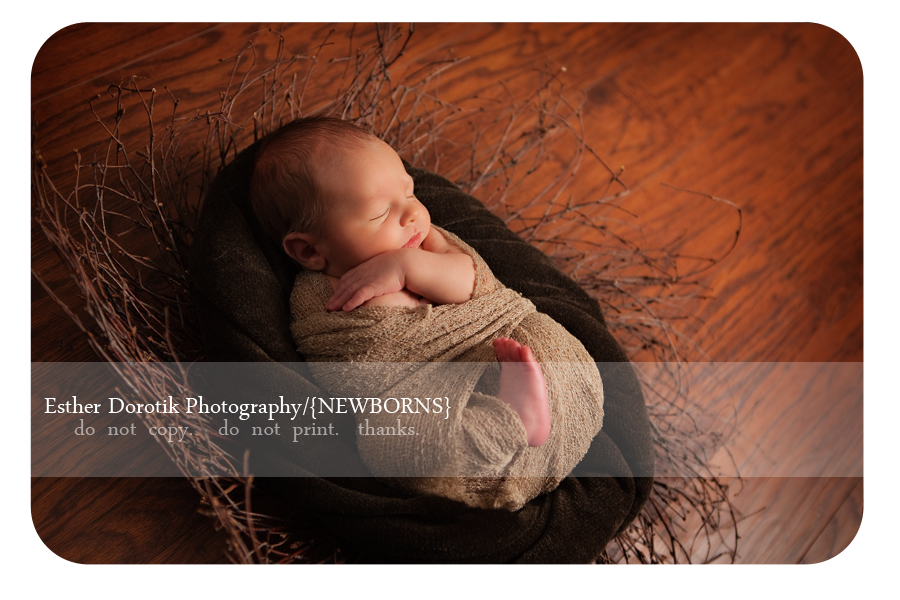 newborn-photograph-of-5-day-old-posing-in-a-twig-basket