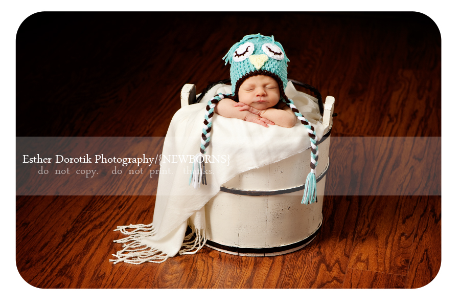 Frisco-newborn-photographer-captures-baby-girl-in-bucket-with-owl-hat