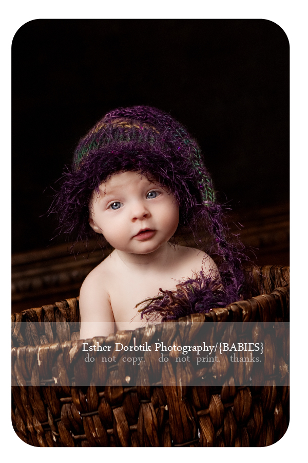 infant-photography-with-fuzzy-hat-sitting-in-basket