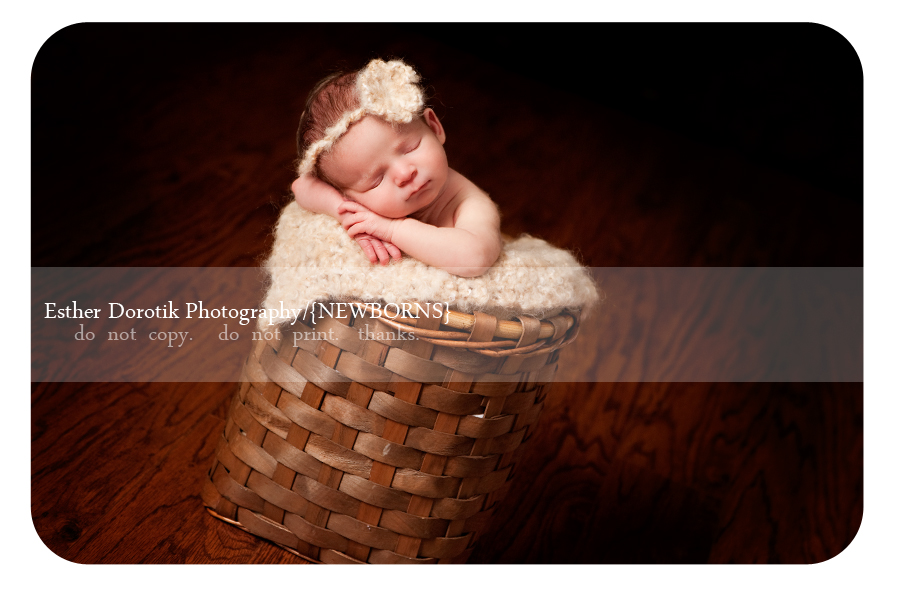 unique-newborn-photograph-of-girl-in-basket-with-cream-headband