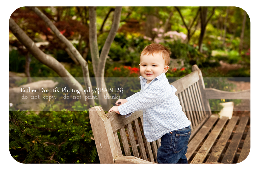 one-year-old-photograph-taken-at-Dallas-Arboretum-on-wooden-bench