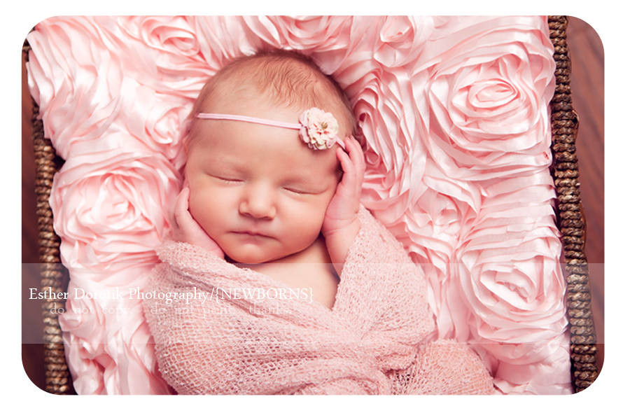 newborn-baby-girl-laying-in-pink-rosette-fabric-taken-by-Dallas-newborn-Photographer