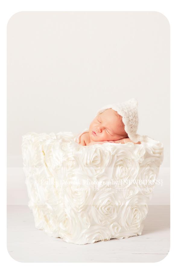 7-day-old-newborn-captured-in-flower-basket-with-cream-knit-hat