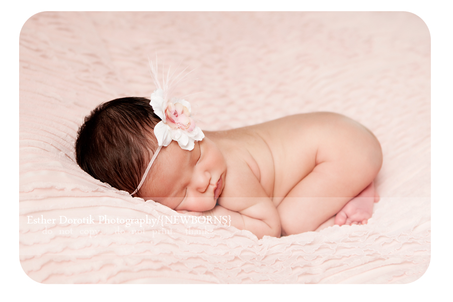 picture-of-newborn-baby-girl-laying-on-pink-blanket-bum-in-air