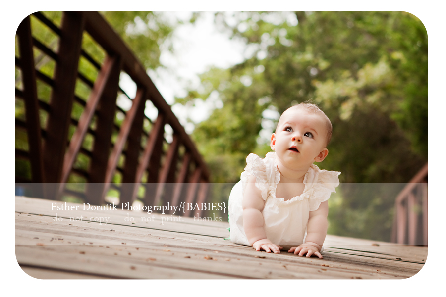 adorable-6-month-old-photo-crawling-on-wooden-bridge-in-woods