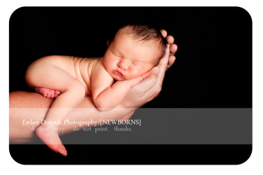 newborn-photography-of-baby-laying-on-Daddy's-arm