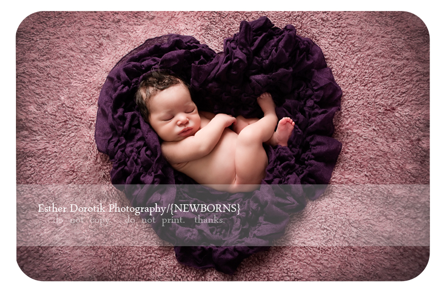 newborn-baby-laying-in-purple-heart-shaped-wrap-by-Dallas-photographer