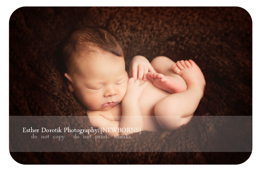 unique-maternity-and-newborn-photographer-captures-baby-balled-up-in-fetal-position