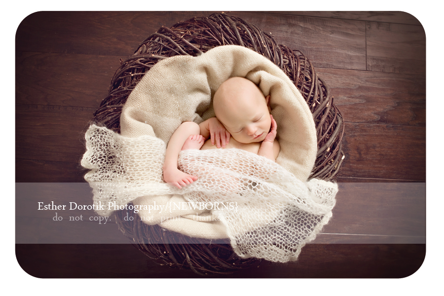 unique-photographer-capturing-the-beauty-of-newborn-babies
