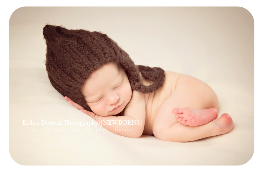 newborn-photography-posing-by-Dallas-newborn-photographer