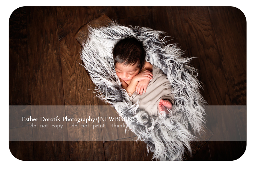 newborn-picture-of-baby-boy-wrapped-in-fur-laying-in-basket-by-Keller-newborn-photographer