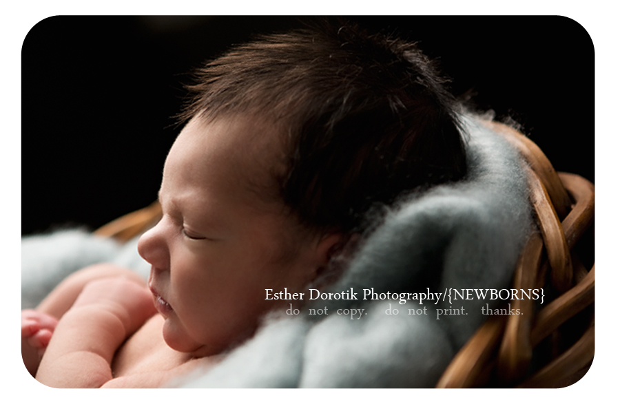 Coppell-newborn-baby-photography-of-7-day-old-sweet-profile-picture