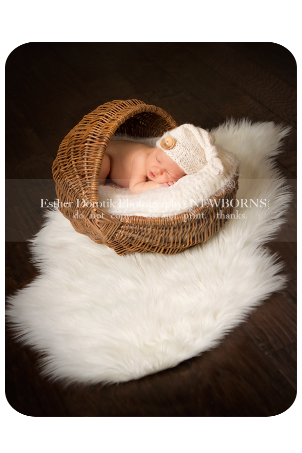 Frisco-newborn-photographer-captures-7-day-old-baby-boy-in-basket
