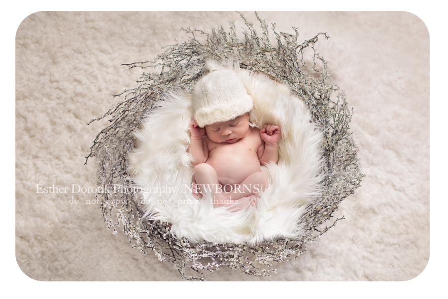 frisco-Dallas-newborn-photographer