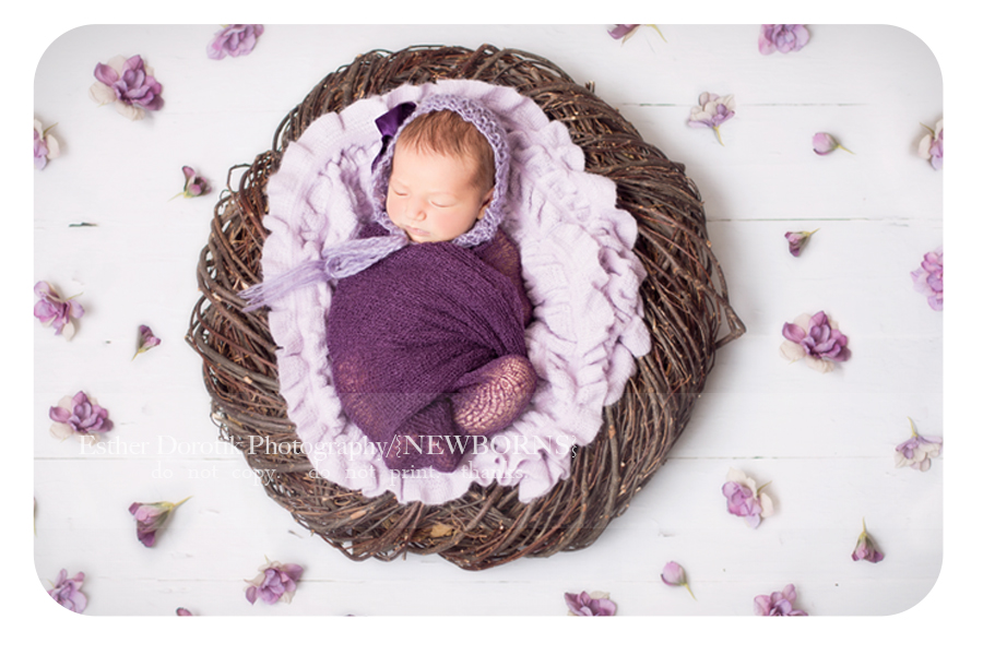 newborn-picture-of-girl-wrapped-in-purple-with-flowers-sprinkled-around-her-by-Grapevine-newborn-photographer